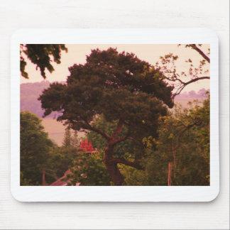Nidderdale tree acessories mousepads