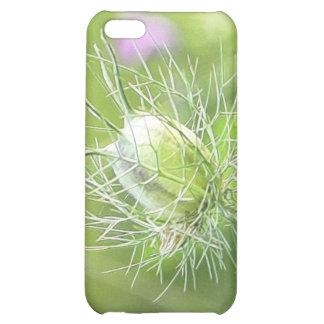 Nigella Seed Head Case For iPhone 5C