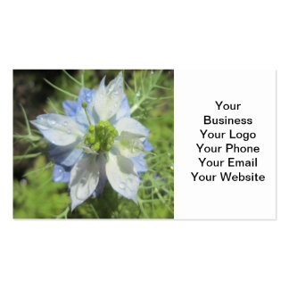 Nigella White Green Blue Rain Pack Of Standard Business Cards