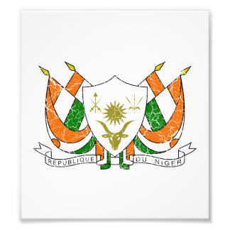 Niger Coat Of Arms Photo Art