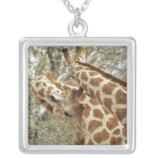 Niger, Koure, two Giraffes in bushes in the west Silver Plated Necklace