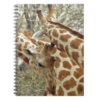 Niger, Koure, two Giraffes in bushes in the west Spiral Notebook