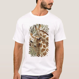 Niger, Koure, two Giraffes in bushes in the west T-Shirt