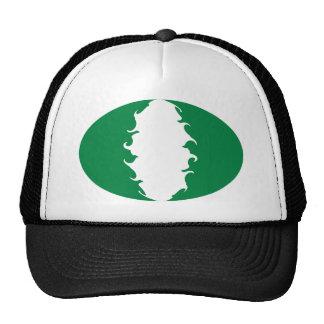 Nigeria Gnarly Flag Hat