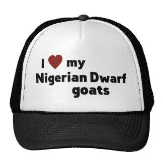 Nigerian Dwarf goats Cap