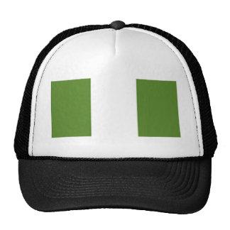 Nigerian Flag Cap