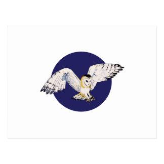 NIGHT BARN OWL POSTCARD