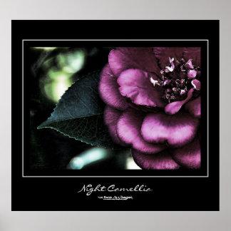 Night Camellia Black Border Poster