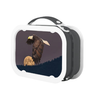 NIGHT FLIGHT LUNCH BOXES