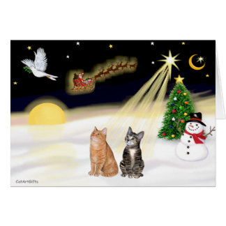 Night Flight - Two Tabby Cats Card
