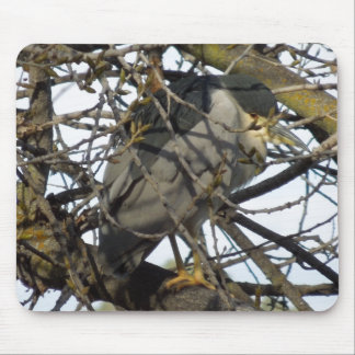 Night Heron in Tree Mouse Pad