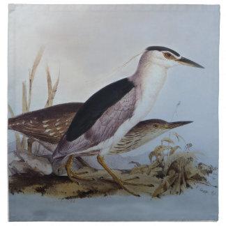 Night Herons by Edward Lear - Bird Art Cloth Napkin