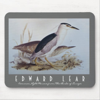 Night Herons Mouse Pad