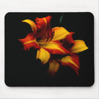 Night Lily... Mouse Mat