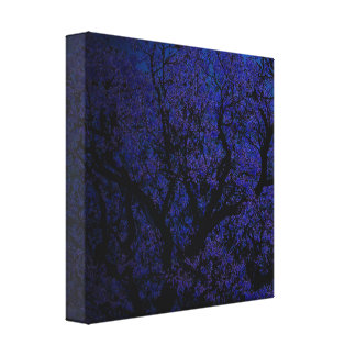 Night Of The Jacaranda Tree, Canvas Print