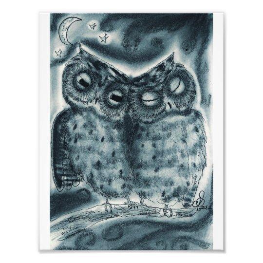 "Night Owl Love - Photo Print 8.5X11"""