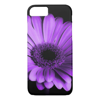 Nighttime purple Gerbera Daisy iPhone case