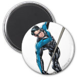 Nightwing with rope magnet