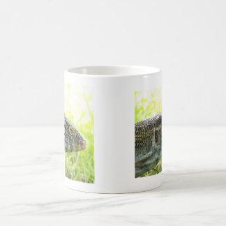 Nile Monitor Basic White Mug
