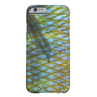 Nimbochromis venustus Fish Scales | Barely There iPhone 6 Case
