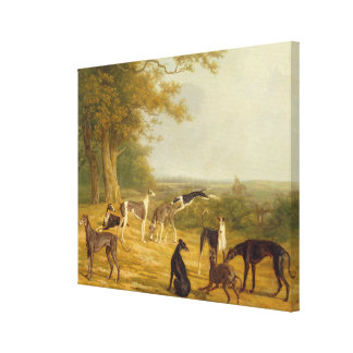 Nine Greyhounds in a Landscape (oil on canvas) Canvas Print