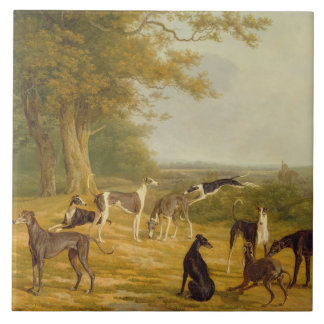 Nine Greyhounds in a Landscape (oil on canvas) Large Square Tile