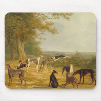 Nine Greyhounds in a Landscape (oil on canvas) Mouse Mat
