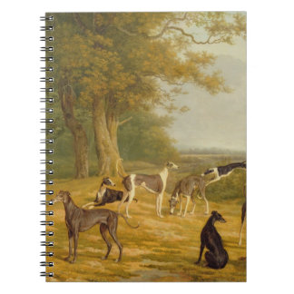 Nine Greyhounds in a Landscape (oil on canvas) Notebooks