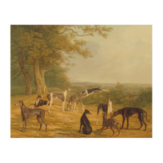 Nine Greyhounds in a Landscape (oil on canvas) Wood Wall Art