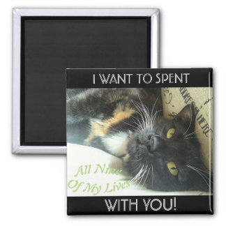 """Nine Lives With You"" Calico Cat Magnet"