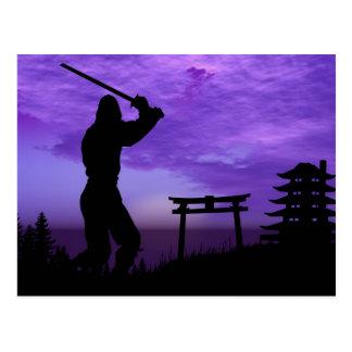 Ninja Attack Postcard