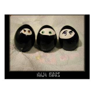 Ninja Eggs Postcard