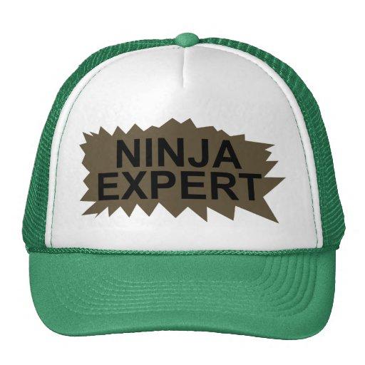 Ninja Expert Hat