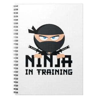 Ninja In Training Notebooks