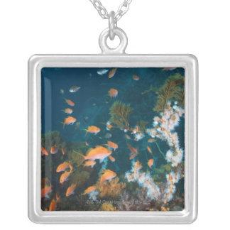 Nishiizumachi, Shizuoka Prefecture, Japan 2 Silver Plated Necklace