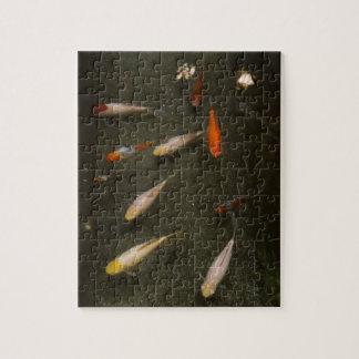 Nishikigoi (Koi Fish) Jigsaw Puzzle