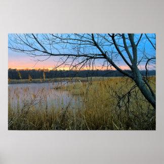 NJ Wetlands Poster