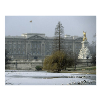 No.7 Buckingham-Palace Postcard