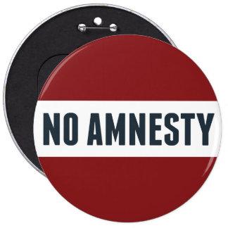No Amnesty Pins