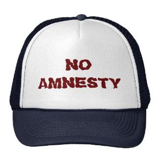 NO AMNESTY - NO JOBS - NO INCENTIVES CAP