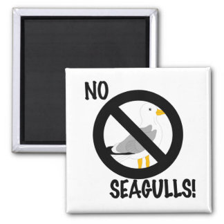 No annoying seagull zone! magnet