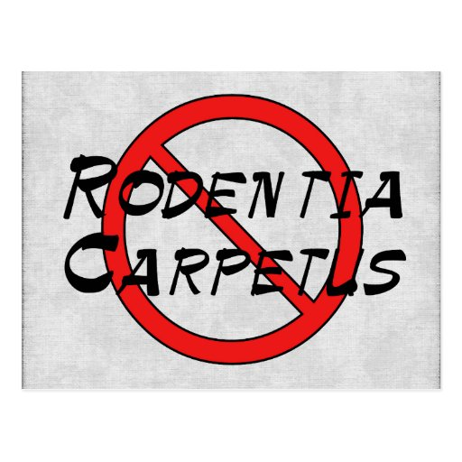 No Carpet Rats Postcards