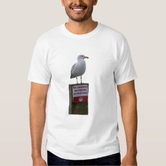 No Crabbing No Fishing Sign Seagull Looe Cornwall Tshirt