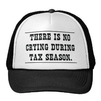 No crying during tax season cap