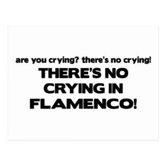 No Crying - Flamenco Postcard