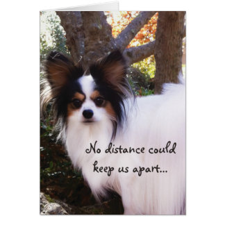 NO distance could keep us apart Papillon Card