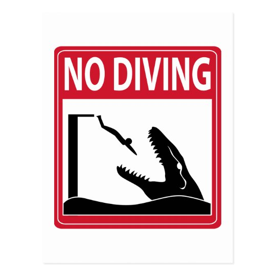 No Diving (Mosasaurus) Postcard
