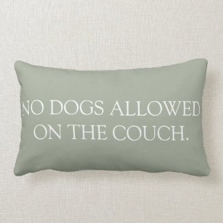 No Dogs Allowed on the Couch lumbar pillow. Lumbar Cushion