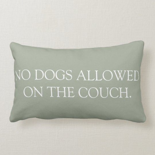 No Dogs Allowed on the Couch lumbar pillow.