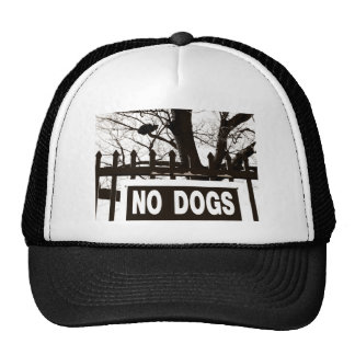 No Dogs Hats